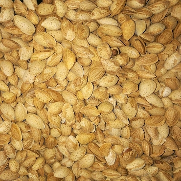 Almond With soft Shell 500 Gram