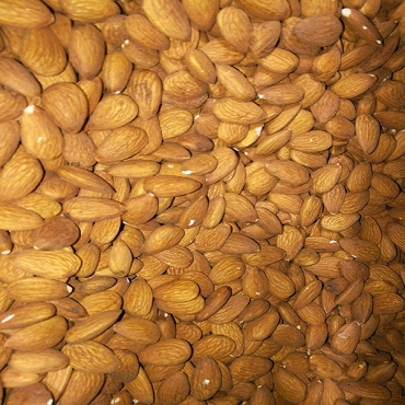 Almond USA Imported 1000 Gram (Badaam)